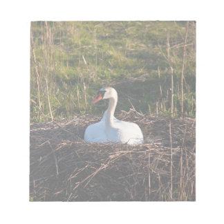 Cisne en jerarquía blocs de papel