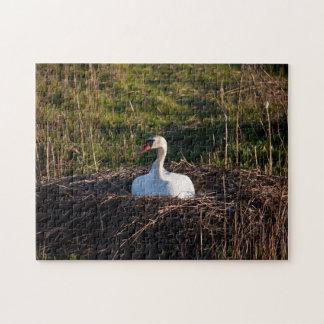 Cisne en jerarquía puzzle con fotos