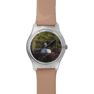 Cisne en jerarquía relojes de pulsera