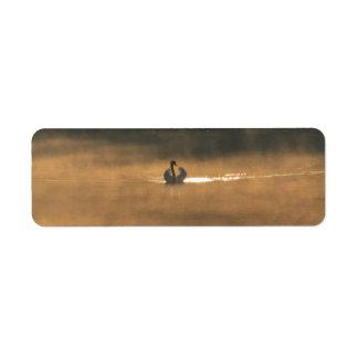 cisne en la niebla etiqueta de remitente