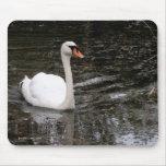 Cisne en Versalles Mousepad Alfombrilla De Ratones