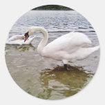 Cisne grande pegatina redonda