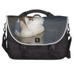 Cisne mudo bolsas de ordenador