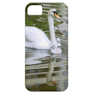 Cisne mudo con los polluelos en el agua iPhone 5 carcasas