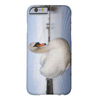 Cisne mudo (olor del Cygnus) en campo inundado, Funda De iPhone 6 Barely There