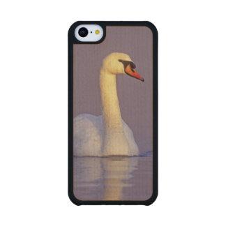 Cisne mudo, olor del Cygnus, varón, Funda De iPhone 5C Slim Arce