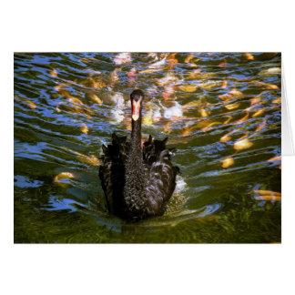 Cisne negro con comitiva tarjeta pequeña