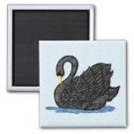 Cisne negro imán
