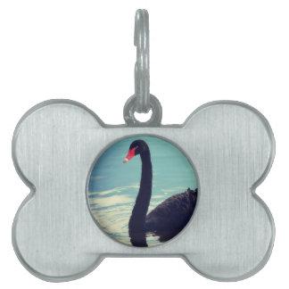 cisne negro placa de mascota