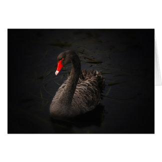 Cisne negro tarjeta de felicitación