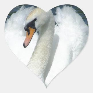 Cisne pacífico del destino calcomanía de corazón personalizadas