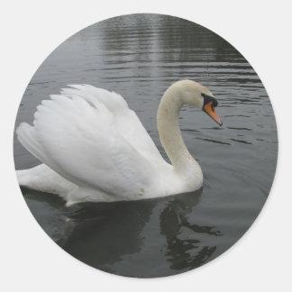 Cisne Etiqueta Redonda