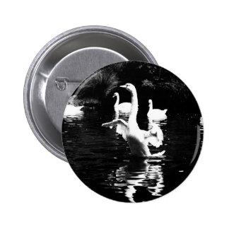Cisne Pin Redondo 5 Cm