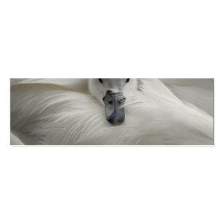 Cisne, plumas blancas hermosas, comodidad de la tarjetas de visita mini