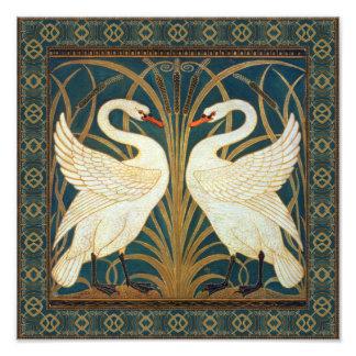 Cisne, precipitación e iris de la grúa de cojinete
