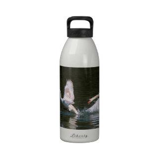 Cisne que persigue otro cisne botella de beber