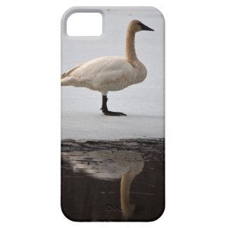 Cisne reflejado funda para iPhone SE/5/5s