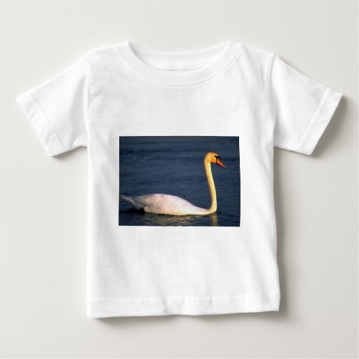 Cisne Remeras