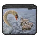 Cisne y bebés funda para iPads