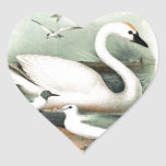Cisne y gaviota calcomanía corazón personalizadas