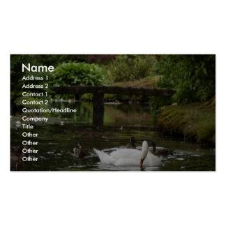Cisne y patos en el lago en los jardines de Stewar Plantilla De Tarjeta De Visita