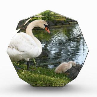 Cisne y premio de acrílico personalizado pollo del