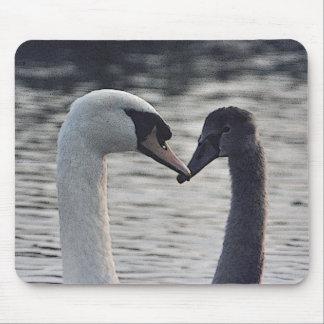 Cisnes aumentados Digitaces Alfombrillas De Raton