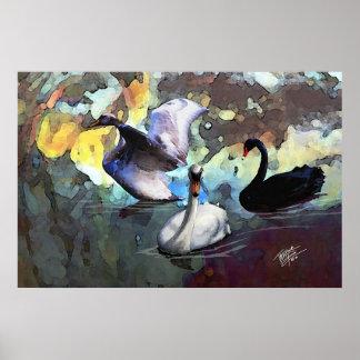 Cisnes chinos del estilo de la acuarela que nadan póster
