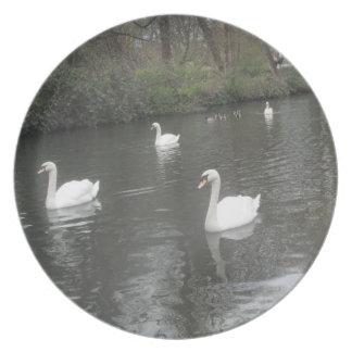 Cisnes de la placa que nadan platos para fiestas