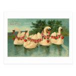 Cisnes de la tarjeta del día de San Valentín del v Postal