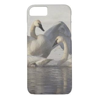 Cisnes de trompetista en el río de Madison en Funda iPhone 7