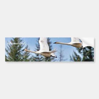 Cisnes de trompetista en vuelo pegatina para auto