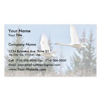 Cisnes de trompetista en vuelo plantilla de tarjeta de negocio