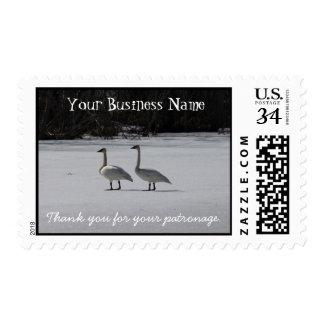 Cisnes de trompetista Nevado; Promocional Sellos