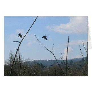 Cisnes de trompetista tarjeta de felicitación