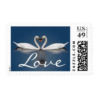 Cisnes del amor que casan sellos