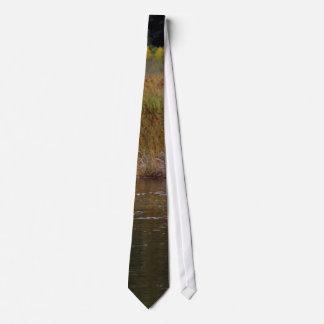 Cisnes en el pantano del alfarero corbata