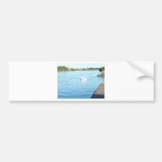 Cisnes en el río Corrib Pegatina Para Auto