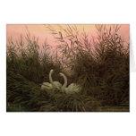 Cisnes en las cañas, c.1820 tarjeta de felicitación