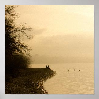 Cisnes en un lago póster