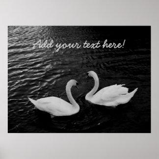 Cisnes gemelos póster