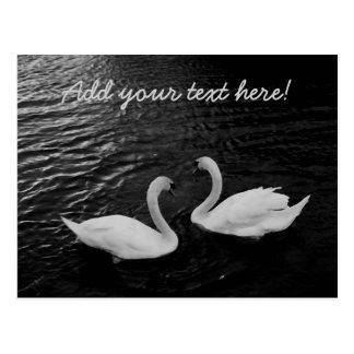 Cisnes gemelos tarjetas postales