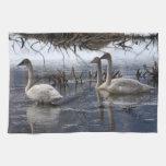 Cisnes juveniles toallas de mano