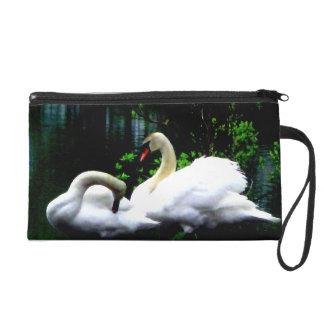 Cisnes mudos blancos