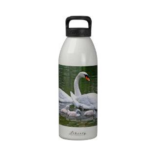 Cisnes mudos con los polluelos en el agua botella de agua
