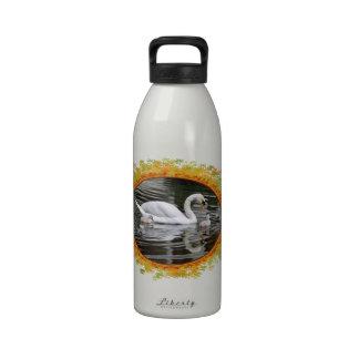 Cisnes mudos con los polluelos en el agua en el ma botella de beber