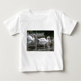 Cisnes mudos con los polluelos en el agua playera de bebé