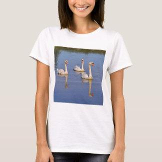 Cisnes mudos que nadan playera