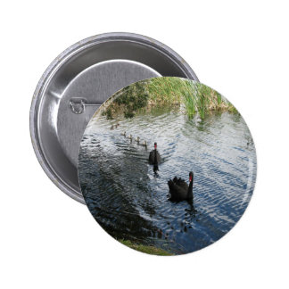 Cisnes negros, Perth Pin Redondo De 2 Pulgadas