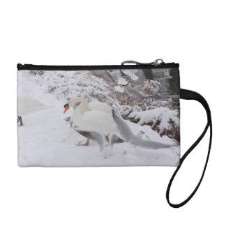 cisnes por la orilla nevosa